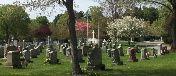 cemetery cropped